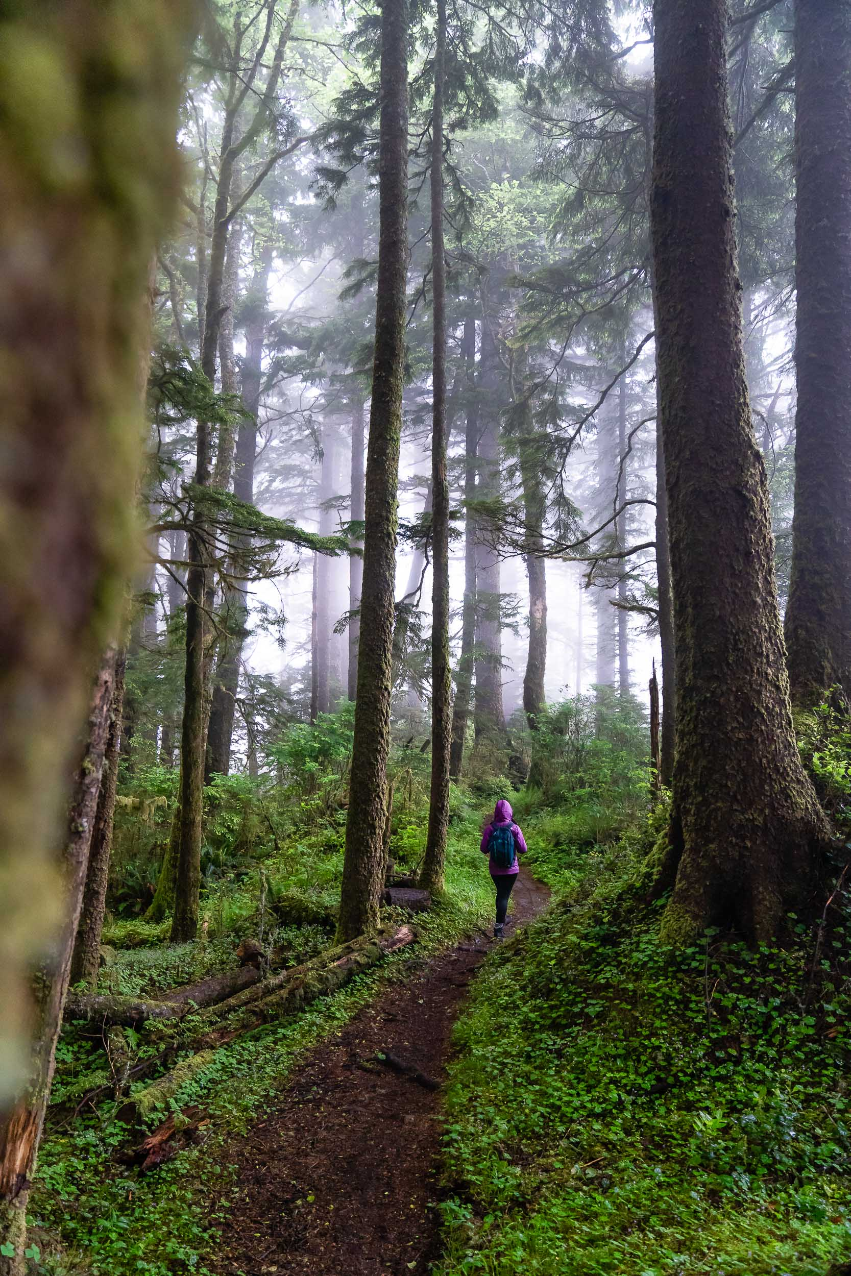 Person walking the Lewis and Clark Discovery Trail in Oregon